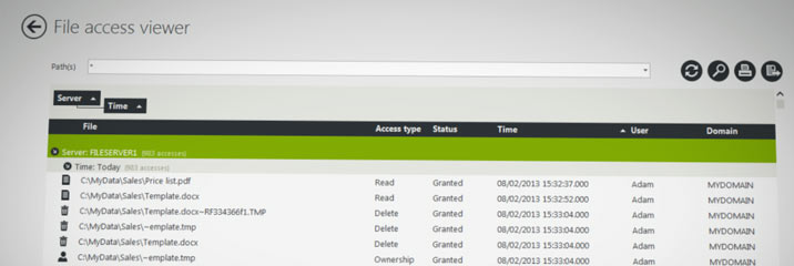 FileAudit 4 Access viewer